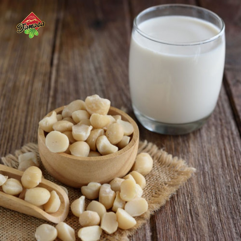 Instructions to make macca nut milk - Damaca.vn